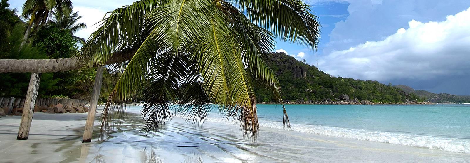 Seychelles Resorts Berjaya Praslin Resort Official Site : bp day 3034c from www.berjayahotel.com size 1600 x 555 jpeg 191kB
