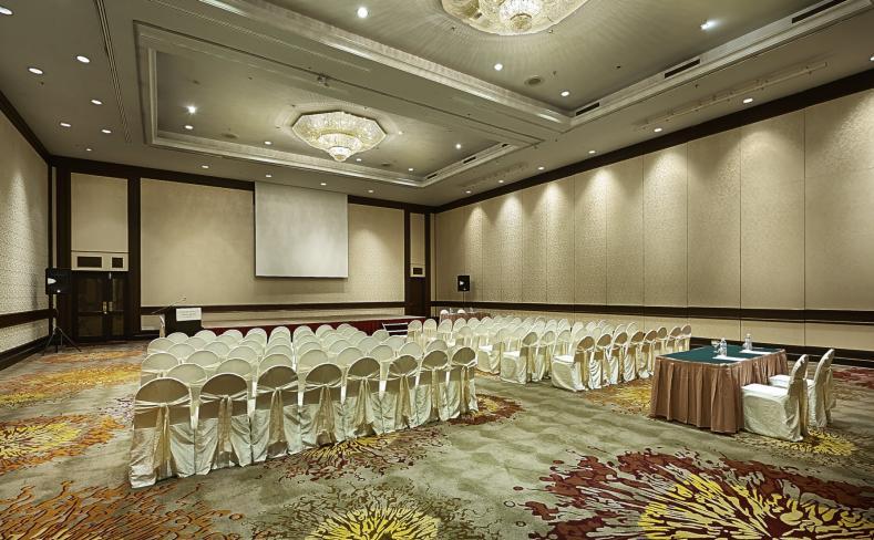 Meeting Room - Theatre Setup