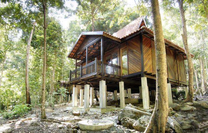 Rainforest Studio - Facade